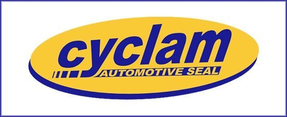 Acquisition of Cyclam Usa and Cyclam Mexico